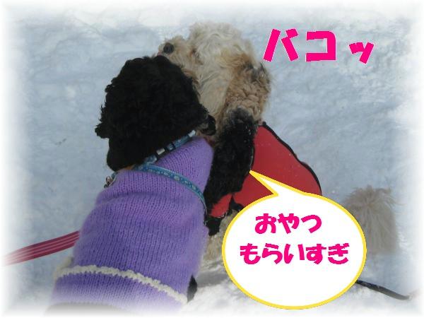 104_convert_20111213192457.jpg