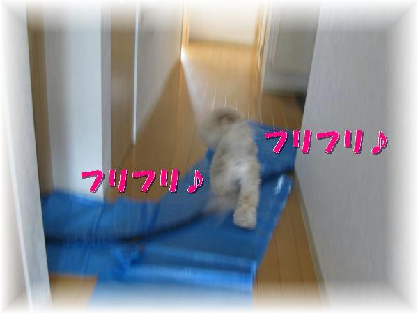 118_convert_20111125134724.jpg