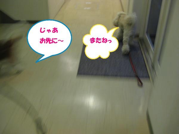 143_convert_20110816202308.jpg