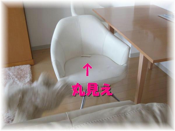 197_convert_20120125191556.jpg