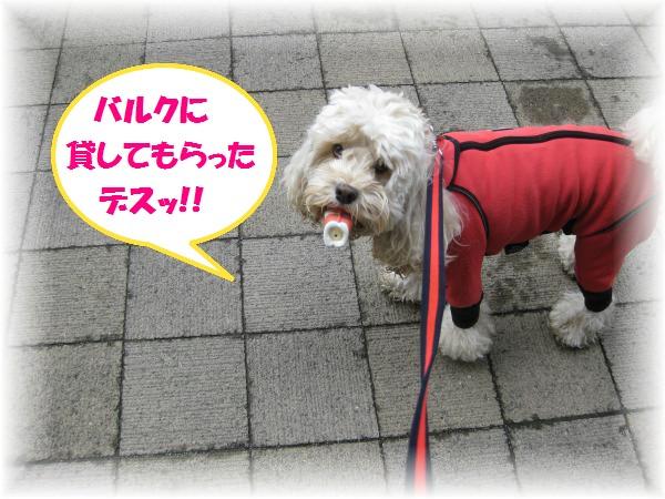 209_convert_20111118190123.jpg