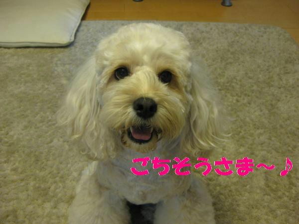 218_convert_20110905201921.jpg
