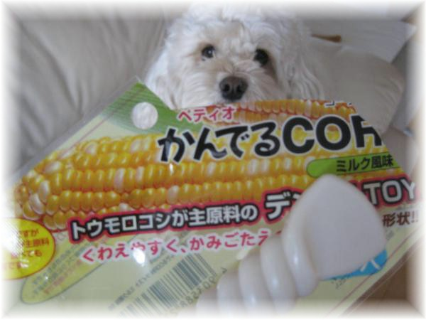 231_convert_20120125191422.jpg
