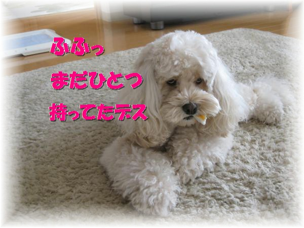 312_convert_20111122215743.jpg