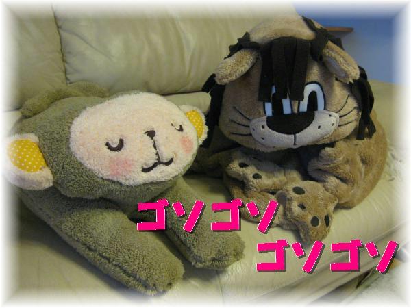 373_convert_20120126222438.jpg