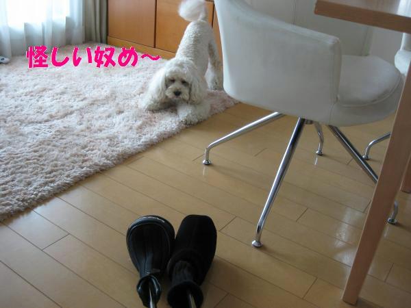 381_convert_20110910143553.jpg