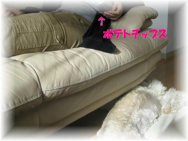 383_convert_20110929202203.jpg