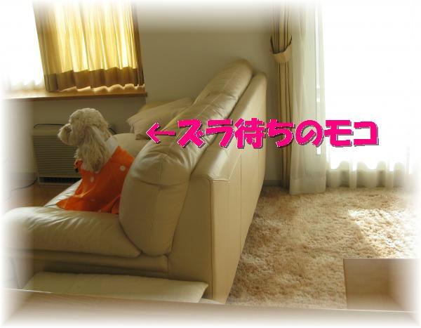 509_convert_20111027191750.jpg