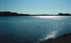 佐鳴湖・陽の輝き
