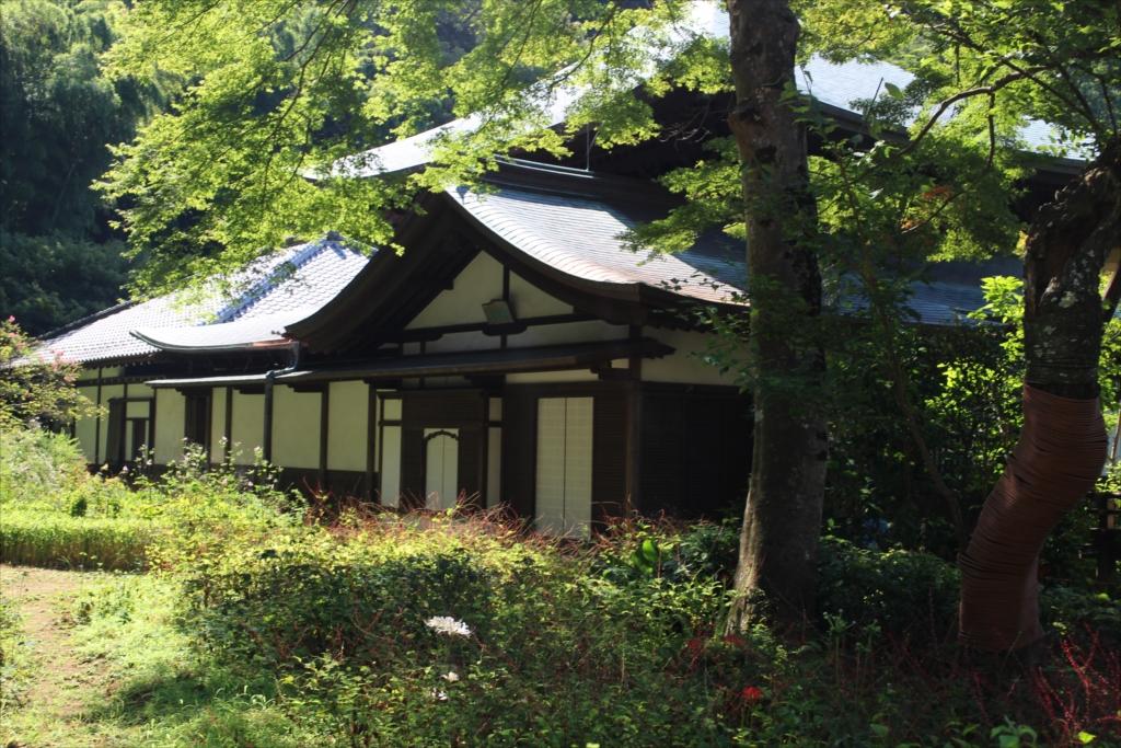 庭園側から見た仏殿、方丈など