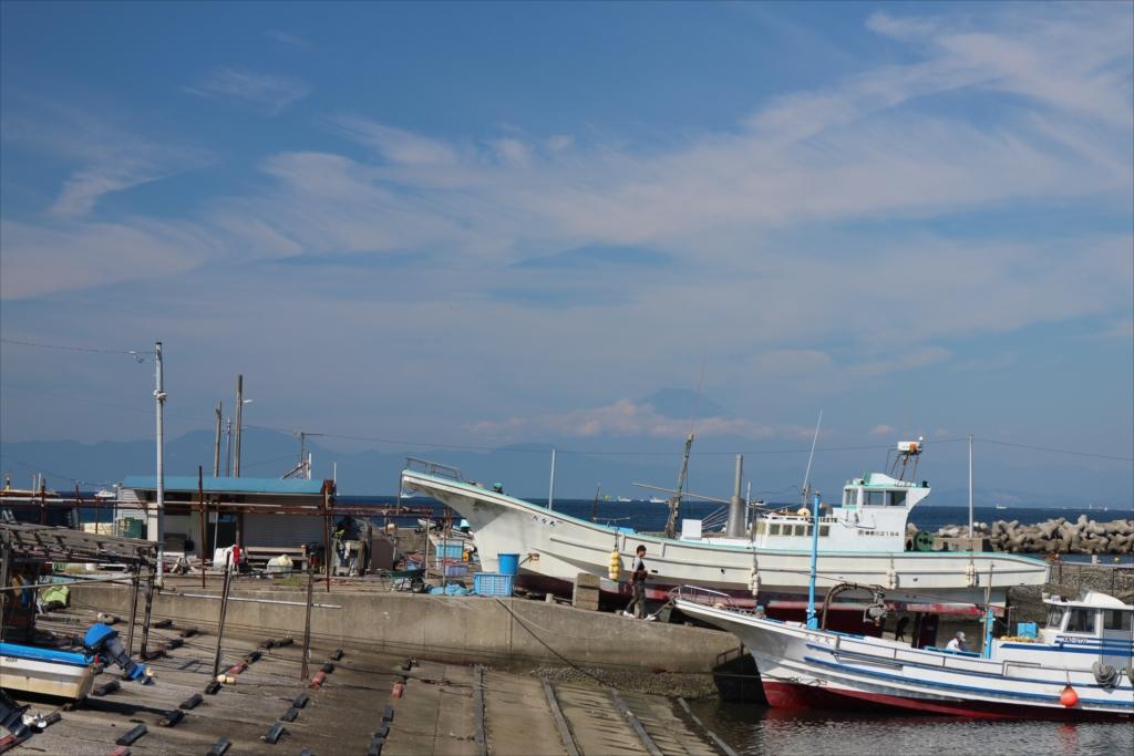 漆山バス停から見た富士山_2