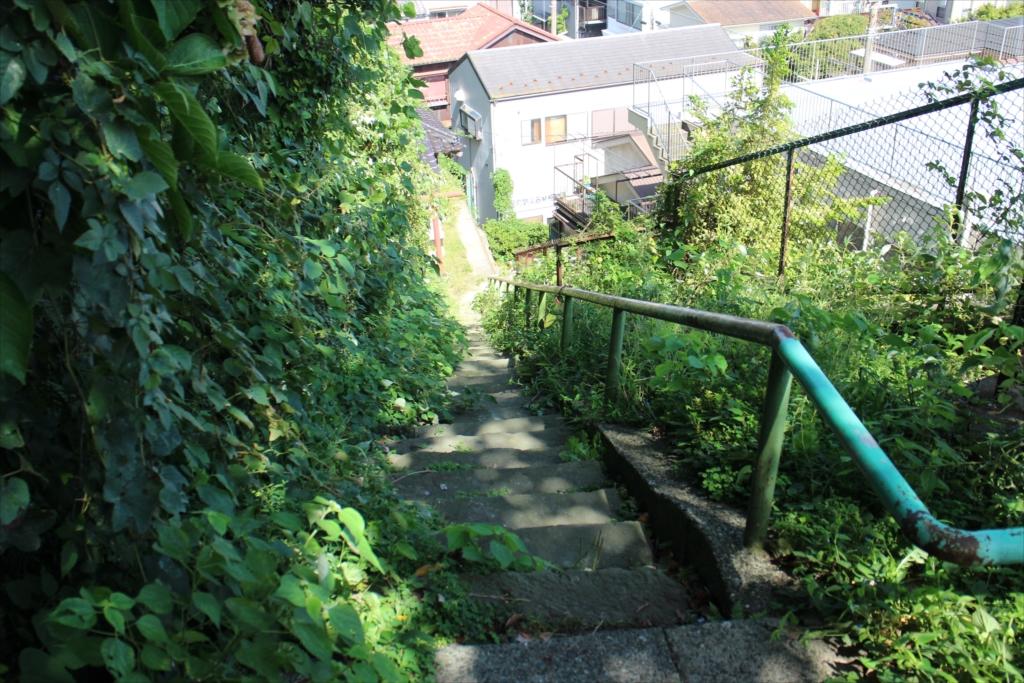階段は延々と続く_1