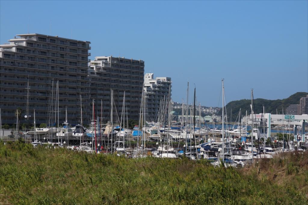 City Marina Velasis_4