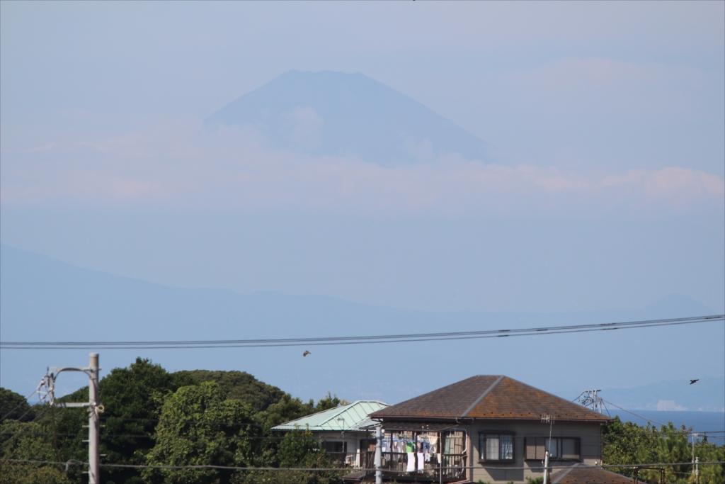ソレイユの丘から見た富士山