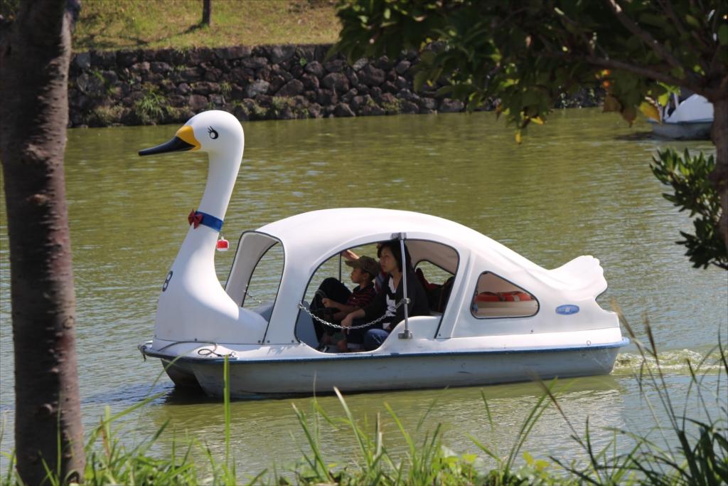スワン型ボート_3