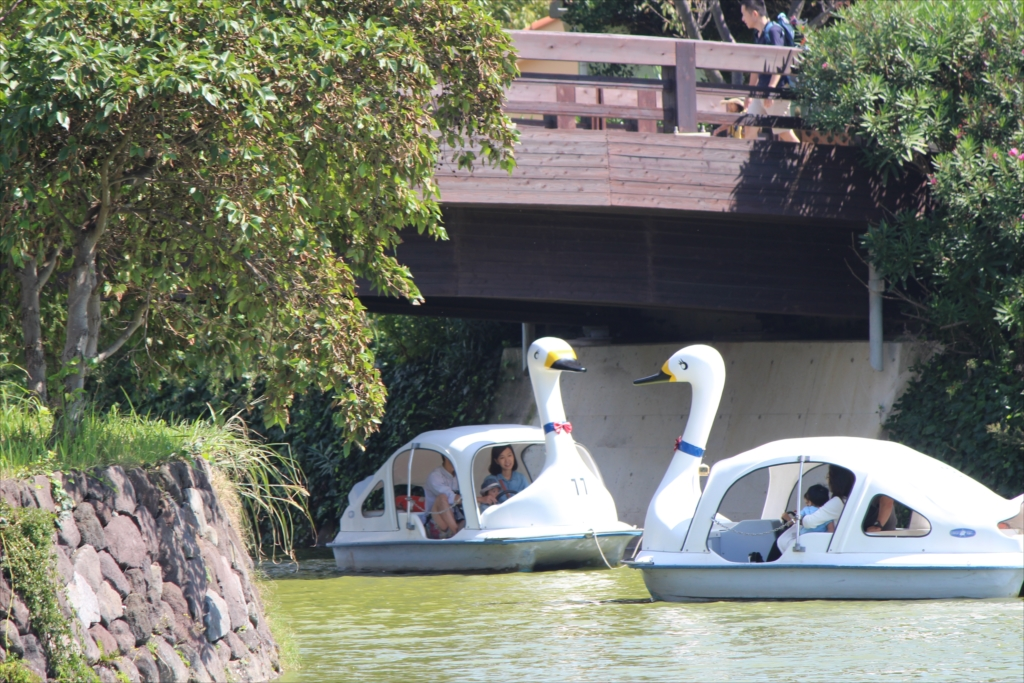 スワン型ボート_5
