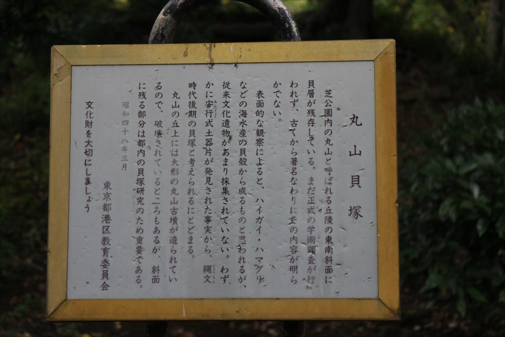 丸山貝塚_2