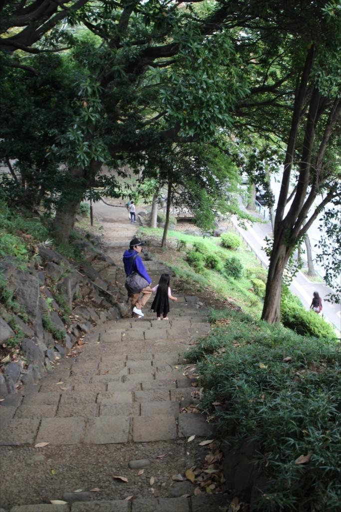 案外急な階段だ