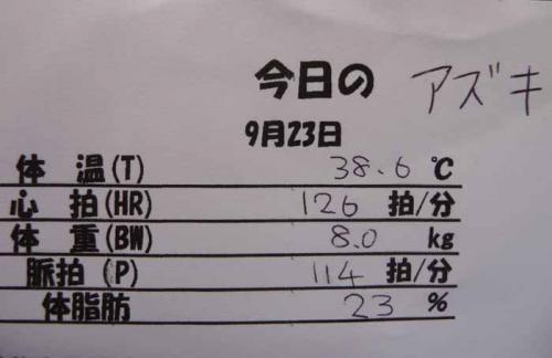 P1280543-AZUKI.jpg