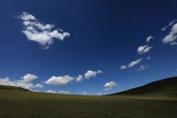 メイン草原