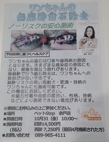 20141010-1.jpg