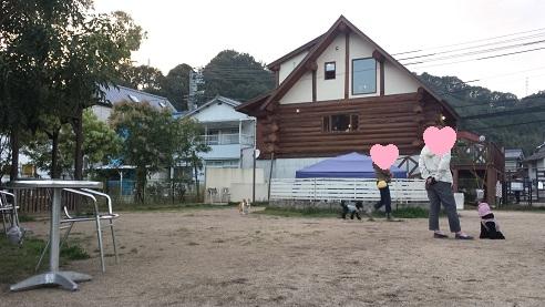 20141014-16.jpg