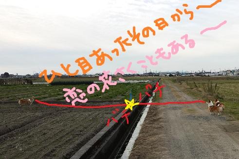 20141219-1.jpg