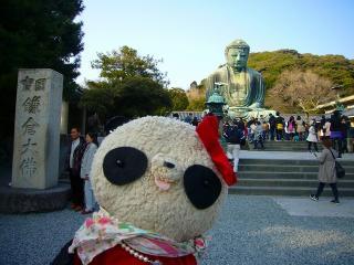 鎌倉の大仏さま発見!