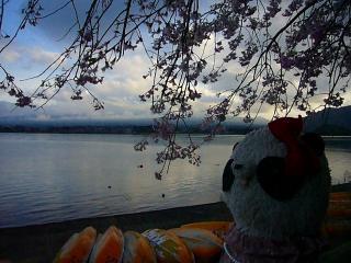 河口湖畔を見つめるB氏
