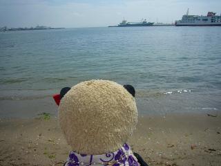 黒船が来た海