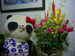 キレイなお花どーん!