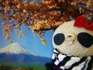 富士山のポスターとパチリ