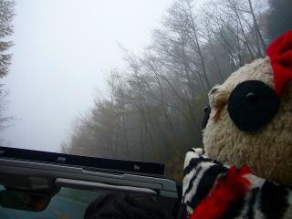 霧の中を走る