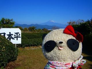 日本平お茶会館にて