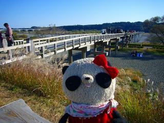 どーん蓬莱橋