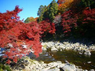 香嵐渓の紅葉祭り