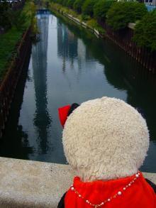 川を眺めたそがれるB氏