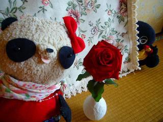 さっそくバラを飾ってみた