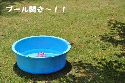 001_convert_20110621213507.jpg