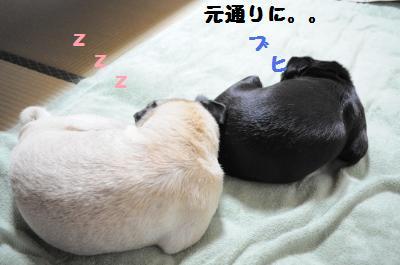 001_convert_20111018000626.jpg