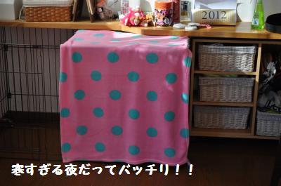 002_convert_20111227184039.jpg