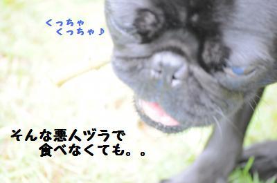 003_convert_20110611162704.jpg
