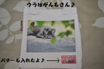 003_convert_20110616211518.jpg