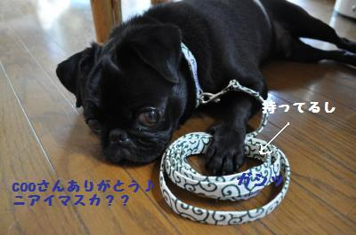 003_convert_20110705204505.jpg