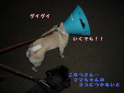 003_convert_20110723220355.jpg