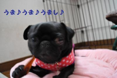 003_convert_20110930003556.jpg