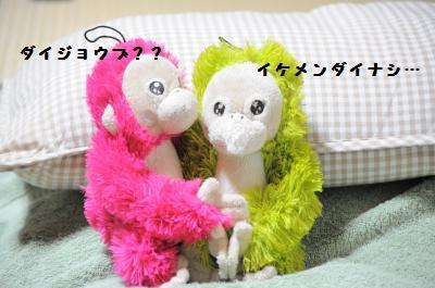 003_convert_20111029213838.jpg