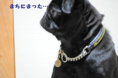 004_convert_20110801224915.jpg