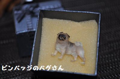 004_convert_20110906193645.jpg