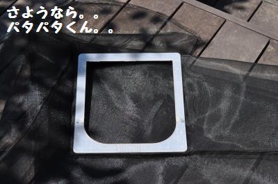 005_convert_20110718000406.jpg